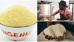 Top health benefits and nutrition of garri you might not know