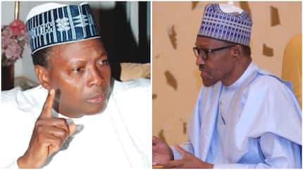 Buhari under pressure by relatives to reinstate sacked DSS DG, Daura - Junaid Mohammed alleges
