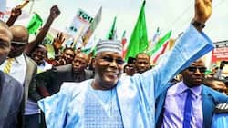 Battle for presidency: Hopes dashed as court adjourns suit challenging Atiku's eligibility