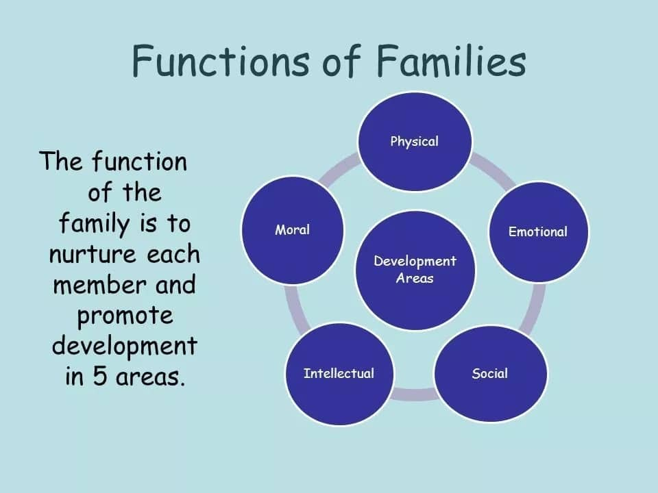 what are the function of a family