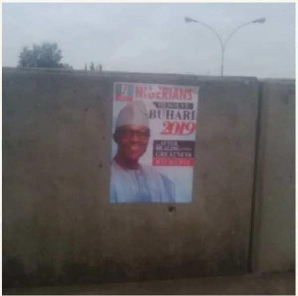 Buhari 2019 Posters Flood Abuja Streets
