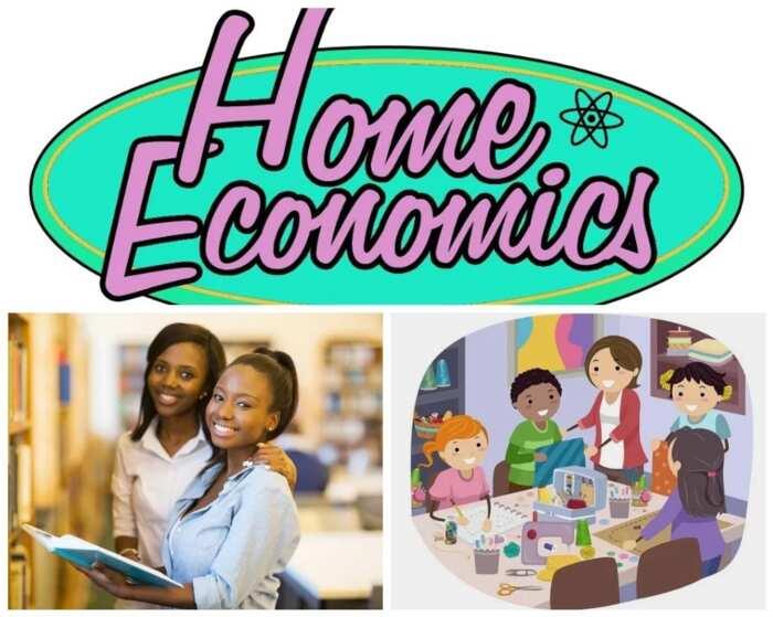 What Is Home Economics Legit Ng