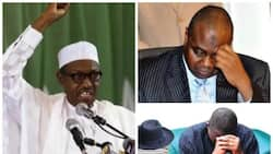 Group reacts to Buhari's suspension of SGF, implicates EFCC of corruption under Jonathan