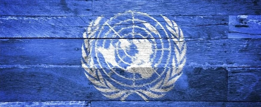 Full meaning of UNESCO and UNICEF: how do they differ?