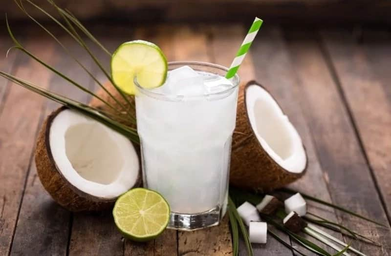 Spiritual meaning of coconut ▷ Legit ng