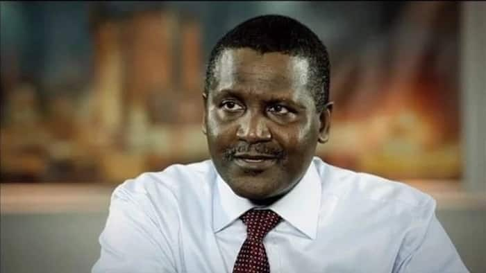 Dangote's fortune shoots him to 117th on the global billionaires index latest ranking, Elon Musk tops list