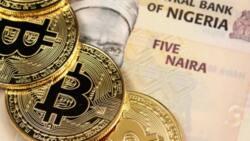 Abubuwan da mu ka ga gani, mu ka yi maza, mu ka hana mu'amalar 'Cryptocurrencies' – CBN