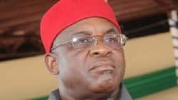 Panama Papers: David Mark backtracks on plan to appear before presidential investigation panel
