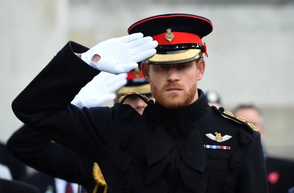 Royal wedding: 30 interesting facts about Prince Harry of Wales