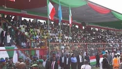 Kano PDP rejects Kwankwaso's son in-law's emergence as governorship candidate