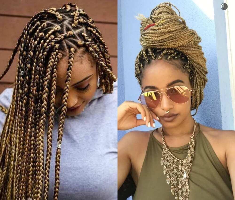 Highlighted braids