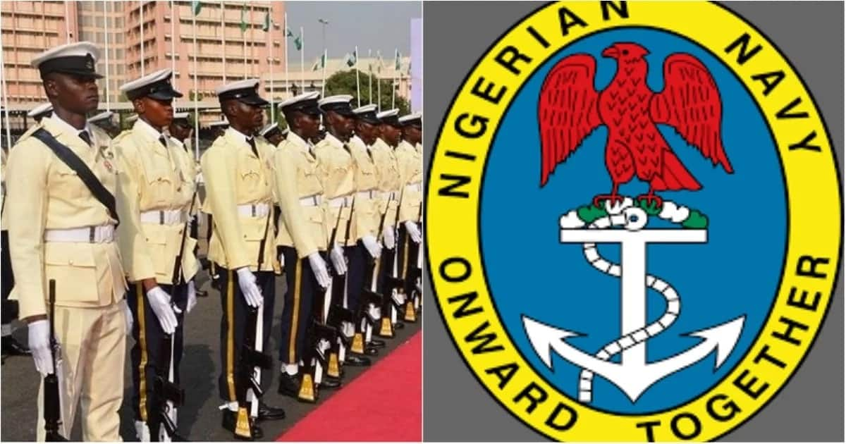 Nigerian Naval ranks lowest to highest ▷ Legit ng