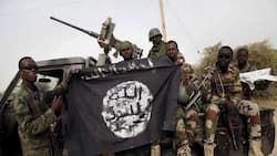 Boko Haram leader Shekau scared of being caught - Nigerian Army reveals