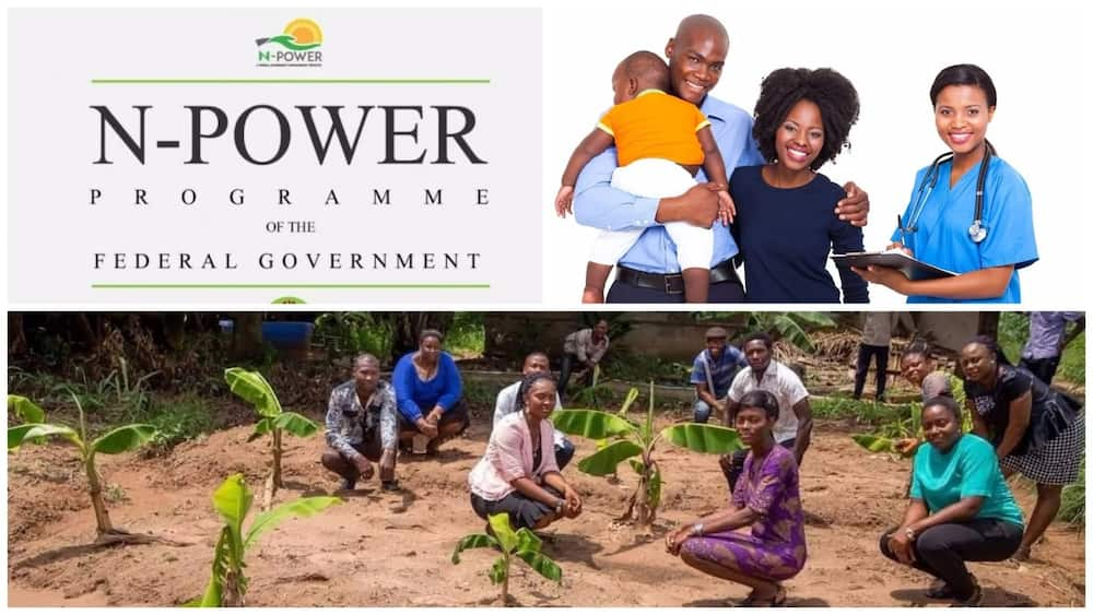 New Federal Government Empowerment Program in Nigeria ▷ Legit ng