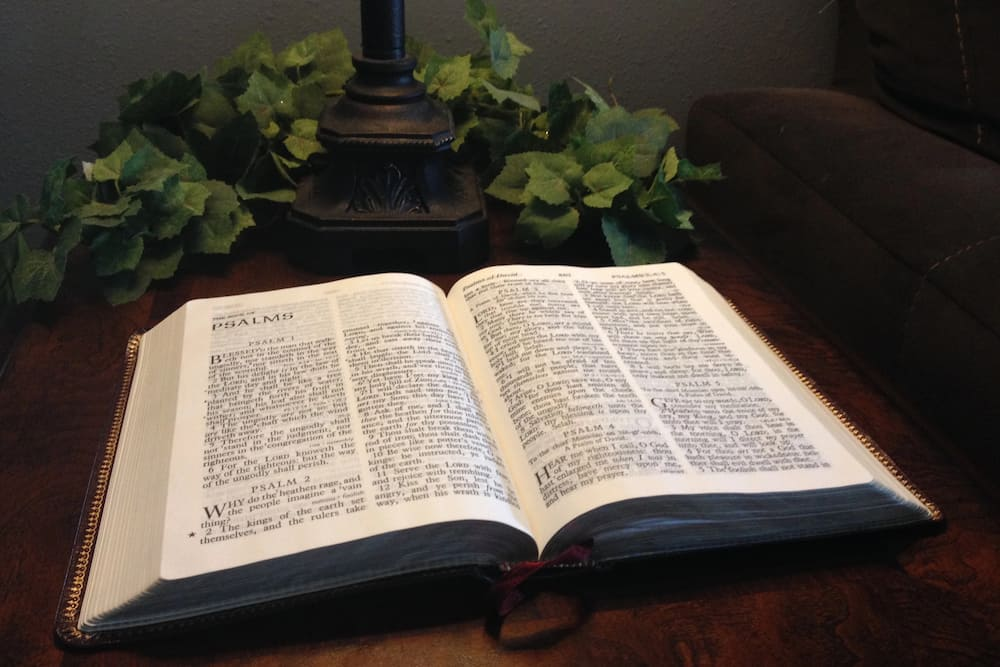 what does the bible say about family