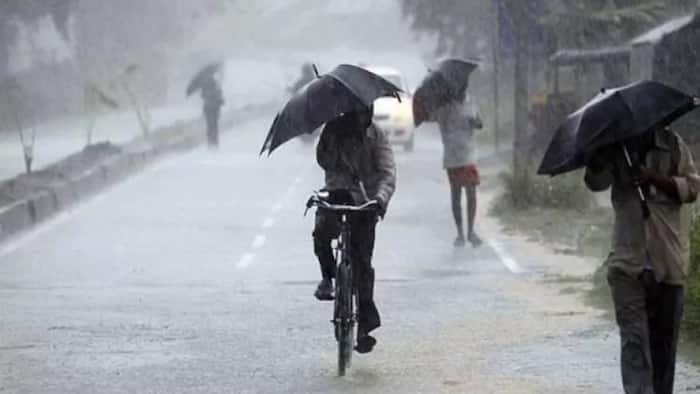 Katsina witnesses highest volume of rain for the first time in 100 years