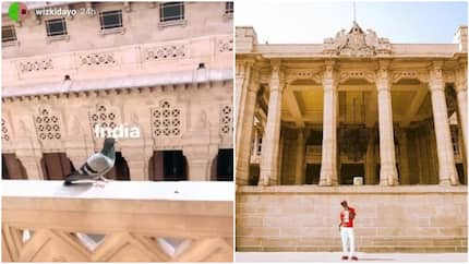 Wizkid shares beautiful photos from Umaid Bhawan palace in India where he reportedly performed for N245.9m