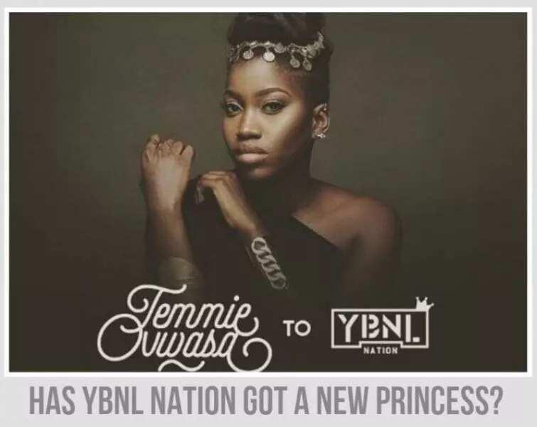 How to join YBNL Nation? ▷ Legit ng