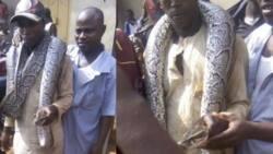 Python killed in popular Abuja market (photos)