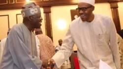 Mu gode ma Allah da Tinubu da suka bamu Buhari – sarkin Lagas