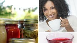 Zobo drink preservation – facts and tips
