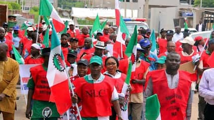 Minimum wage: Nigerian workers least paid in Africa - NLC