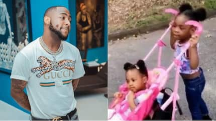 One big family: Davido's baby mamas hold a playdate for their daughters in America